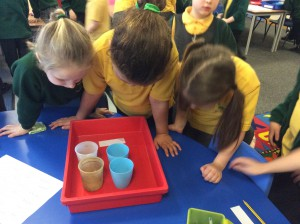Year 1 experiment