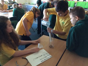 Year 6 experiment
